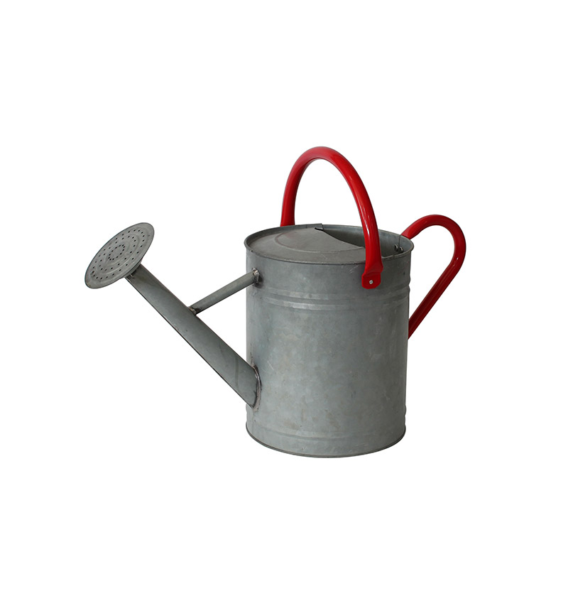 Galvanised Watering Can 10L