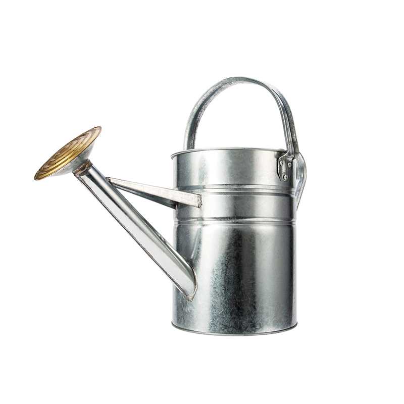 China Supply Cheap Metal galvanized garden watering can