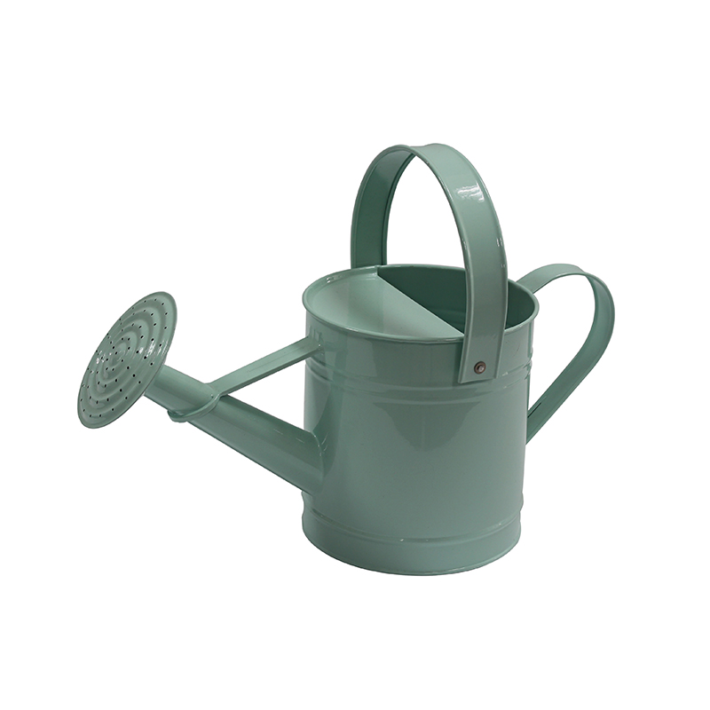 Light blue galvanized metal plant watering can