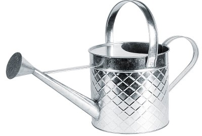Traditional Design 2 Gallon Galvanized Steel Watering Can