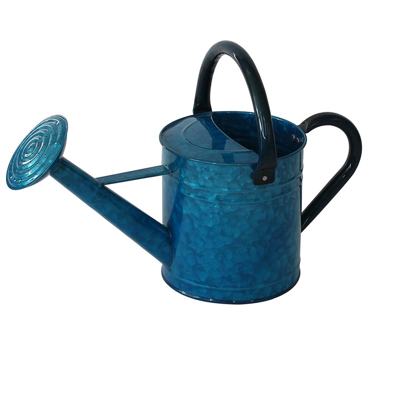 Water can supply wholesale cheap antique watering can