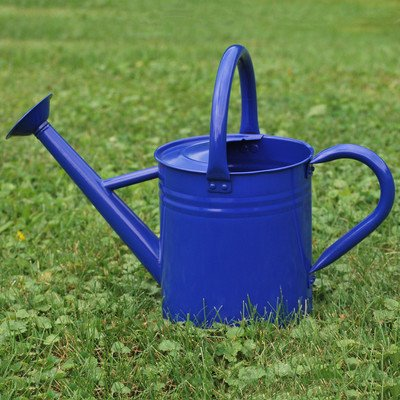 3.5 L Galvanized and powder coated Blue Watering Can